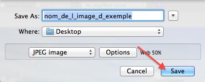 """Cliquez sur """"save"""" pour enregistrer l'image au format .jpg sur votre ordinateur"""