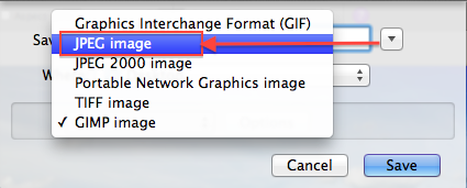 Choisissez JPEG comme format de l'image