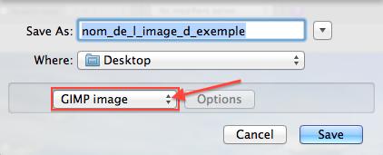 Cliquez sur GIMP image
