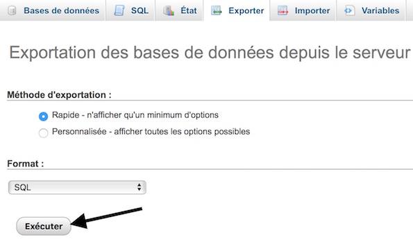Cliquez sur Exécuter pour exporter votre base de données