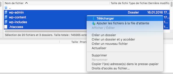 Téléchargez les fichiers installés sur votre serveur via le client FTP FileZilla